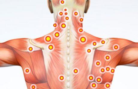 באמצעות חמש נקודות אלה בגוף שלכם תוכלו להוריד משמעותית את מפלס הלחץ
