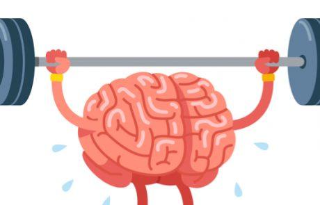 לא רק הגוף: כיצד ניתן לשמור על הכושר של המוח?